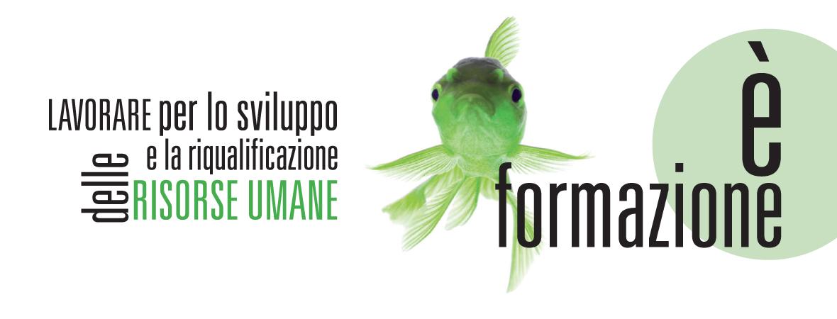 FORMAZIONE2