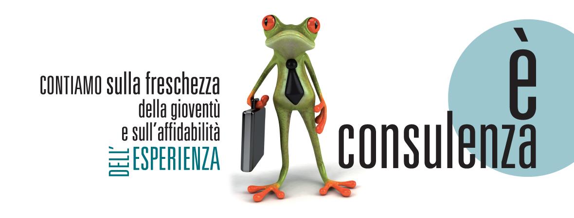consulenza2
